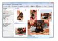 Photo Database: скриншот #3